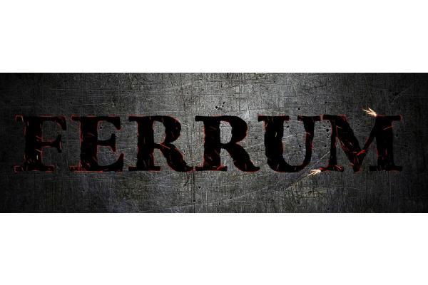 Ferrum gym - 6