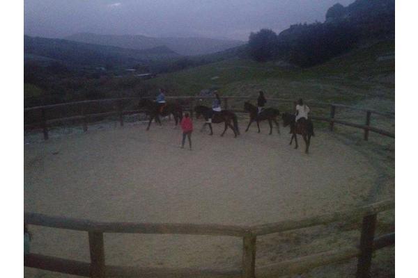 My Horse αγρόκτημα - 2