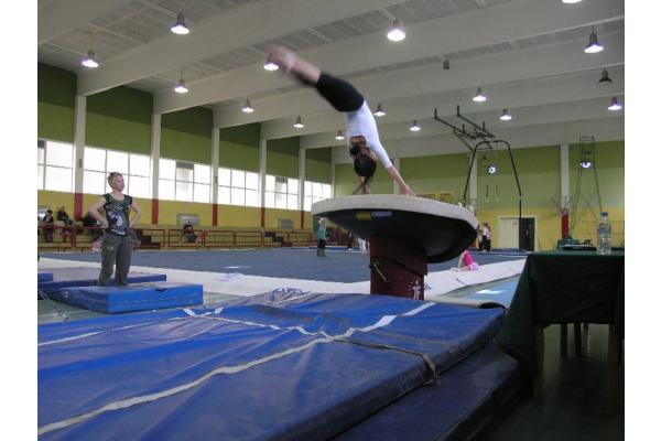 Φιλαθλητικός Γυμναστικός Σύλλογος (Αλικαρνασσός) - 3