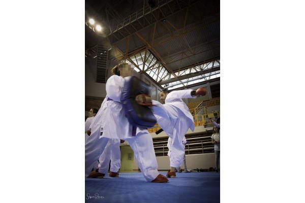 Ακαδημία Shotokan Karate Do Ηρακλείου - Κατσαντάς Βασίλης - 2