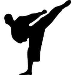 Ελληνική Ένωση Shito-Ryu Shukokai Karate Do