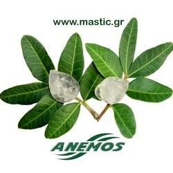 ANEMOS - Προϊόντα Με Φυσική Μαστίχα Χίου
