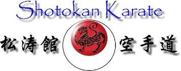 Τι είναι το Shotokan καράτε;